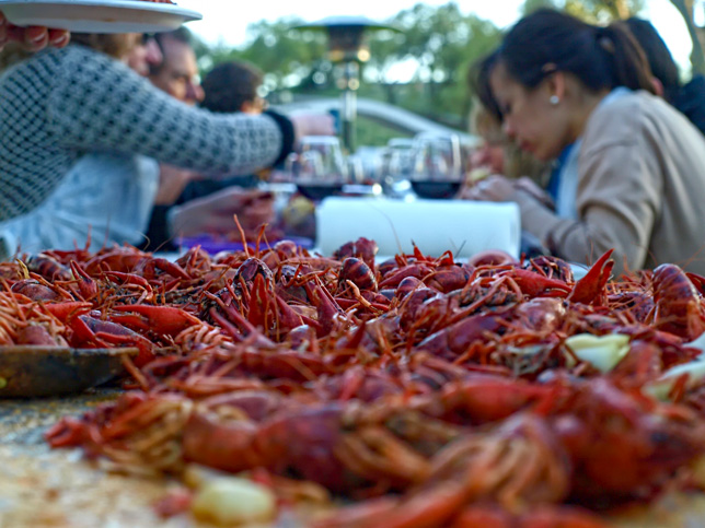 A crawfish boil party