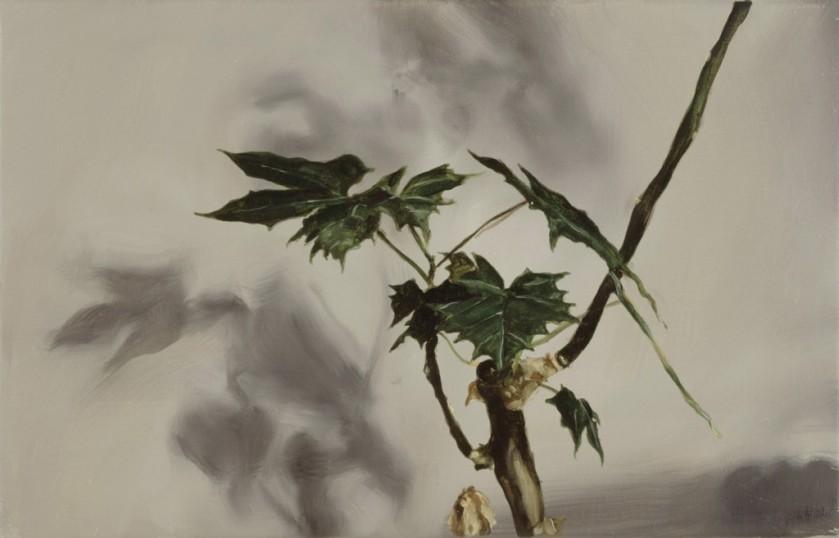 2003-Dragonplant-200-e1323801936366