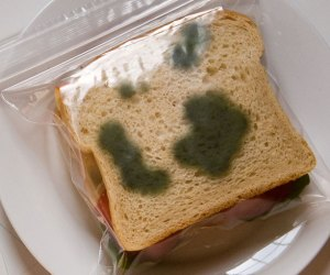 moldy-theft-deterrent-lunch-bag